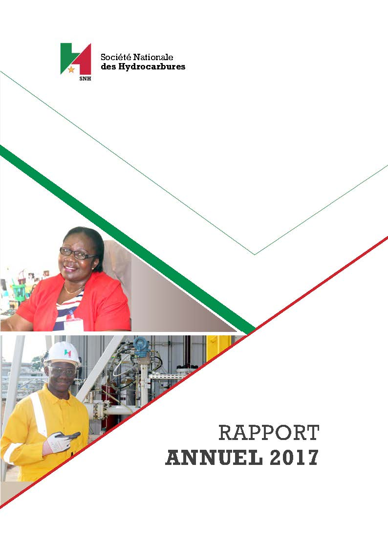 cover rapport annuel 2017 VF
